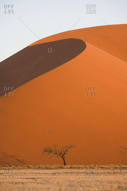 Large sand dune rising above the Deadvlei clay pan in Namib-Naukluft National Park