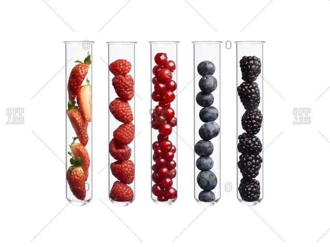 Berries in test tubes, studio shot.