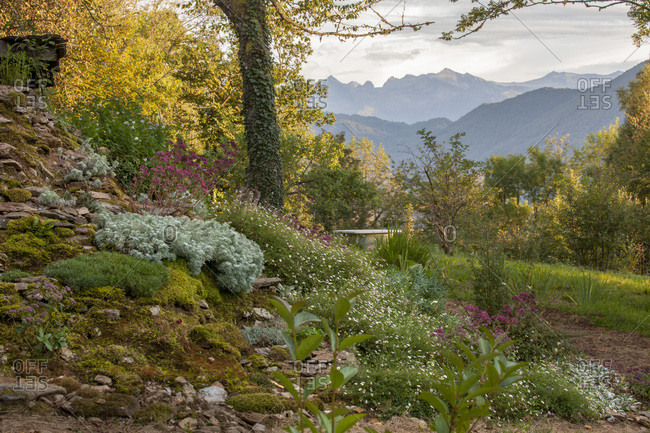 Rockery  in a landscape of mountains in the evening, private garden