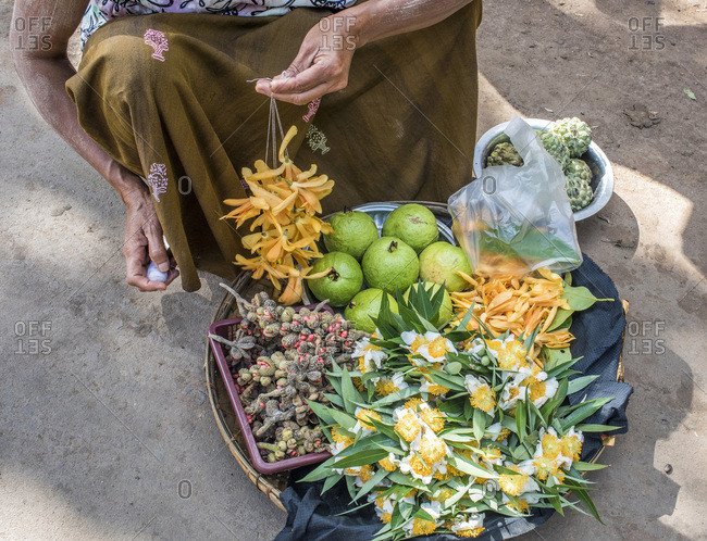 Myanmar, Mandalay area, flower selling on the village market to make donations to Buddha