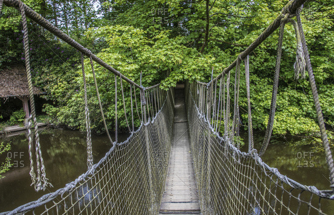 France, Ille-et-Vilaine, Botanical Garden of Upper Brittany, rope bridge