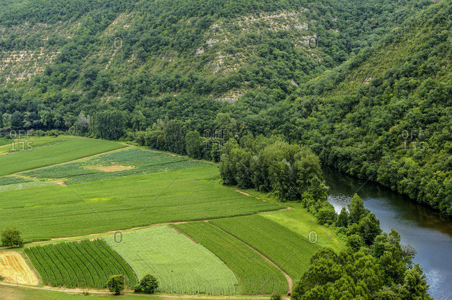 France, Lot, Lot lower valley, cornfield in the Caillac meander seen from the Saut de la Mounine