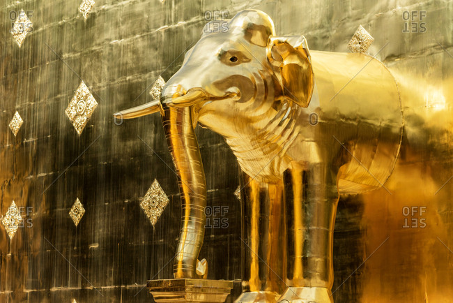 From below shot of shiny vivid golden elephant statue against golden wall, Chiang Mai