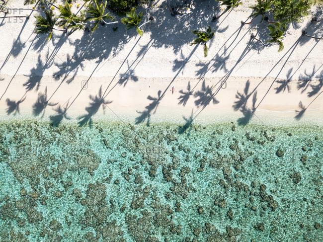 Woman sunbathing alone on an empty beach on a sunny day in Fiji