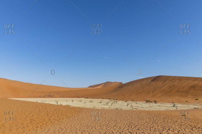 Africa- Namibia- Namib-Naukluft National Park- Deadvlei- dead acacia trees in clay pan