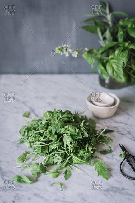 Heap of fresh rucula green on marble counter of table while cooking