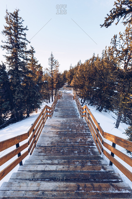 Perspective view of wooden stairway going down among coniferous trees in snow, Canada