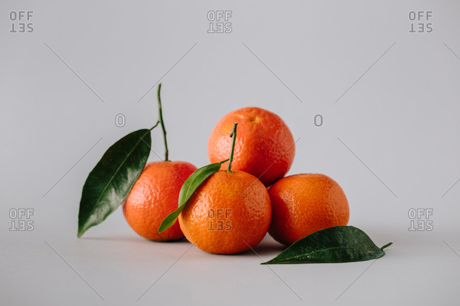 Pile of fresh ripe unpeeled tangerines with green leaves on gray background