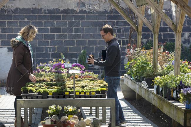 Coworkers examining plants in garden center