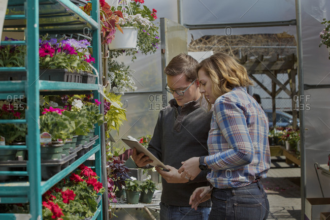 Coworkers using tablet computer while standing by shelves in garden center