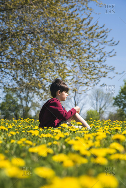 Side view of boy sitting amidst yellow flowering plants on field at park during sunny day