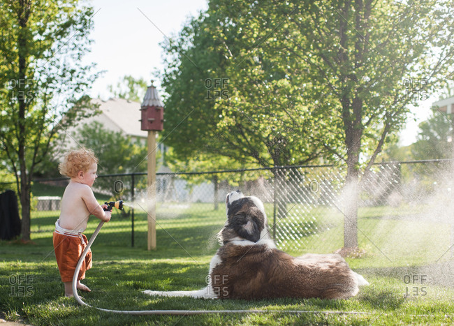 Side view of shirtless baby boy spraying water on dog with hose while standing at yard