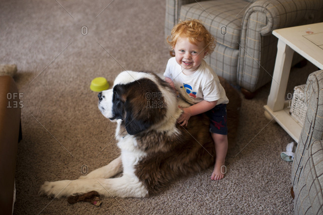 High angle portrait of cute happy baby boy sitting on dog at home
