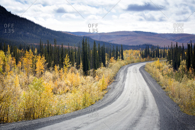 Fall colors surrounding Dempster Highway in Yukon, Canada