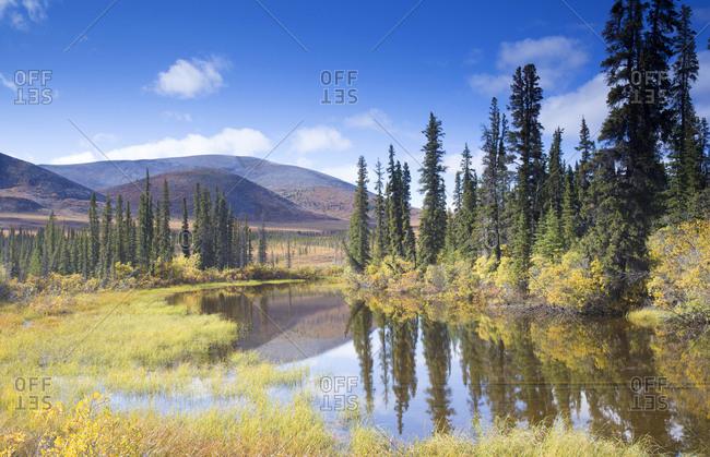 Fall colors surrounding lake in rural Yukon, Canada