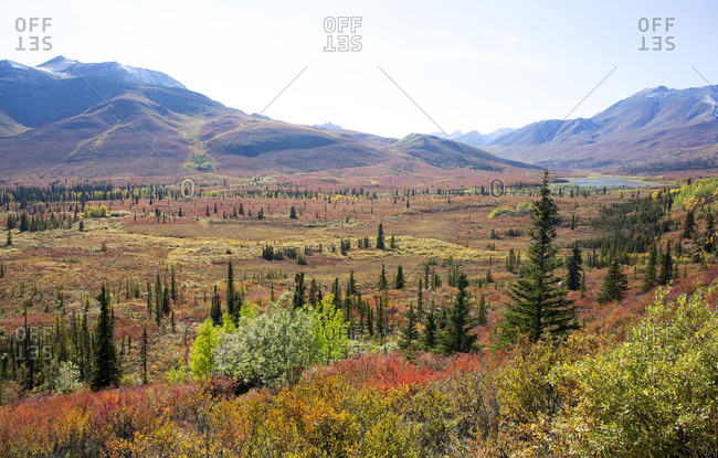Scenic view of Tombstone park region, Yukon, Canada