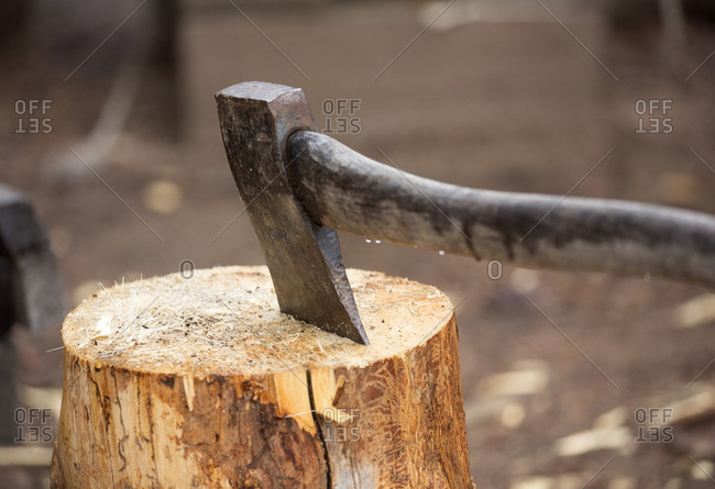 Axe in a log at a hunter's campsite in central Yukon, Canada