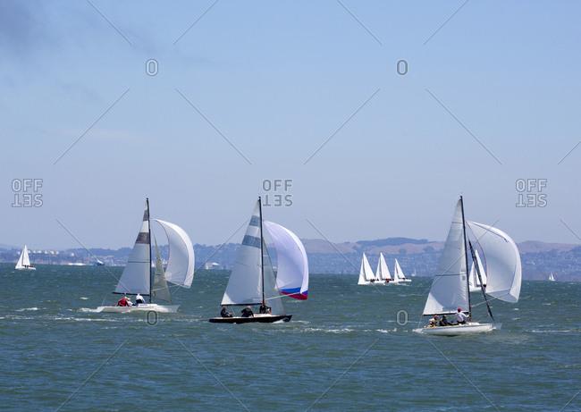 San Francisco, California, USA - August 9, 2015: Sailboats in San Francisco bay