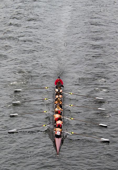 Seattle, Washington, USA - November 8, 2015: Female row team