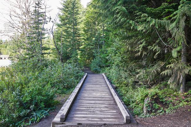 Wooden path on Mount Hood, Oregon, USA