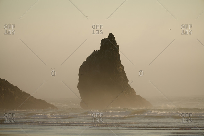 Misty weather at Cannon Beach, Oregon, USA