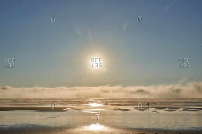 Sunshine over waves on Cannon Beach, Oregon, USA