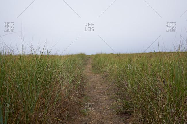 Nature path in rural Oregon, USA