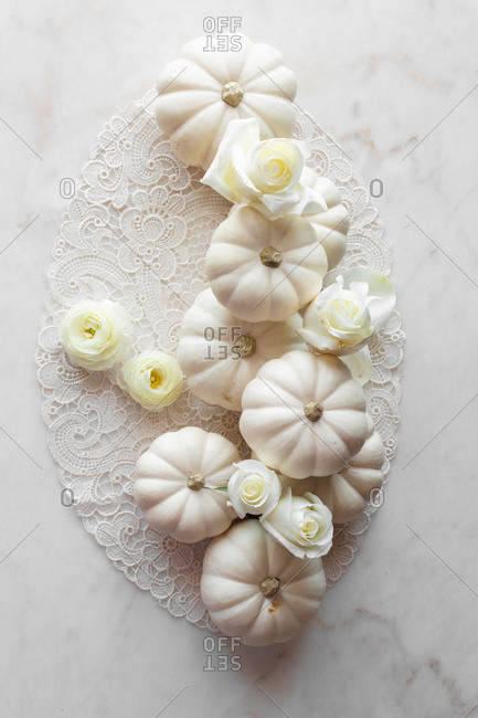 Still life with white pumpkins and white roses