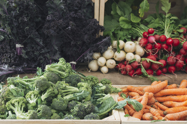 Fresh vegetables for sale at farm stand