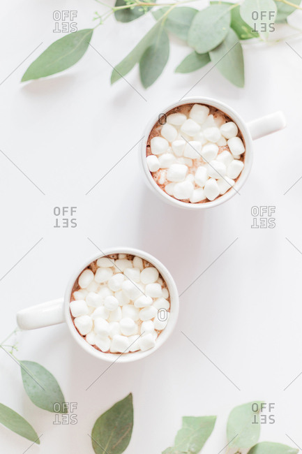 Two cups of hot chocolate on a white background with greenery