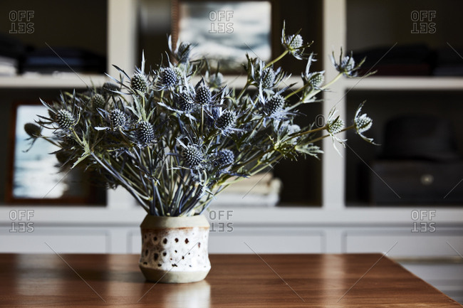 Thistle flowers on a wooden table