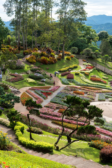 June 2, 2018: Landscape of beautiful Mae Fah Luang Garden with blooming flowers on slope of mountains, Doi Tung