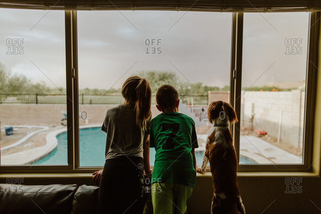 Children and dog looking out window at swimming pool on a rainy day