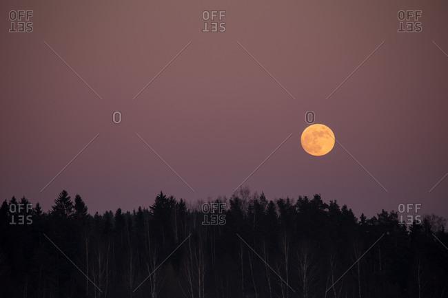 Beautiful full moon glowing on the sky