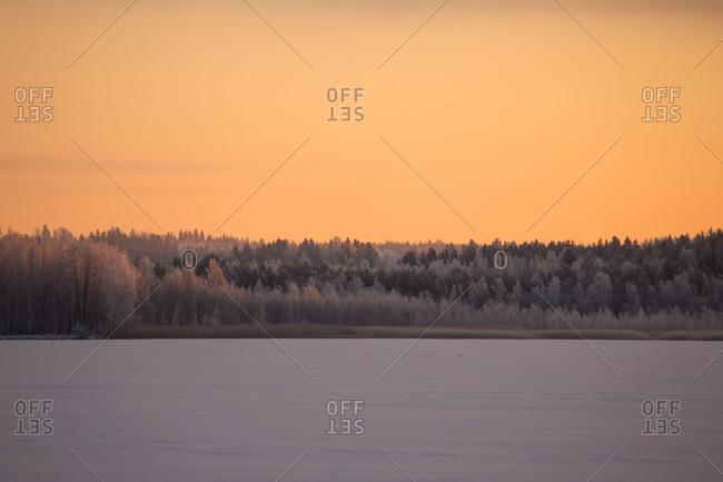 Beautiful winter morning, winter sunrise