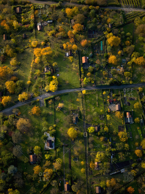 View from above autumn treetops and houses