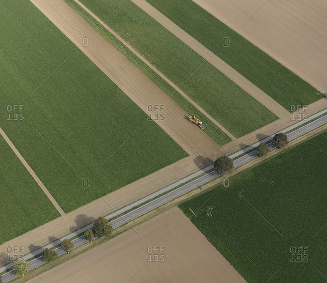 Aerial view combine harvester in agricultural crop, Hohenheim, Baden-Wuerttemberg, Germany