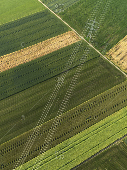 Aerial view vibrant green agricultural crops, Donaueschingen, Baden-Wuerttemberg, Germany