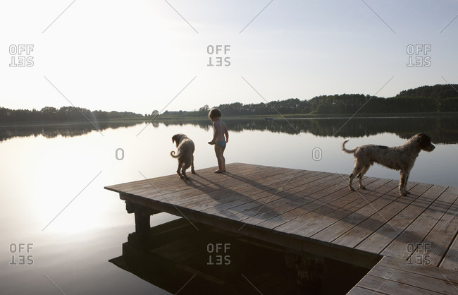 Girl and dogs on lakeside dock