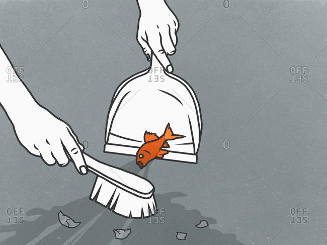 Man sweeping goldfish into dustpan