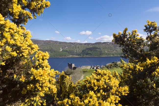 UK- Scotland- Loch Ness- Drumnadrochit- Urquhart Castle