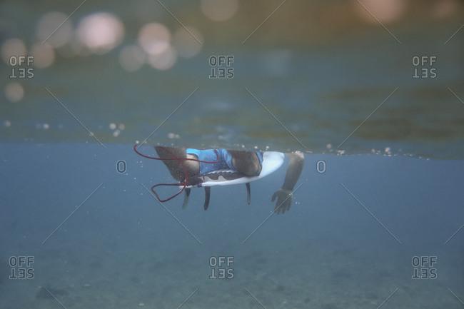 Maldives- Indian Ocean- surfer sitting on surfboard- underwater shot