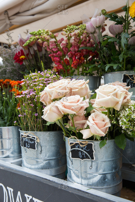 Fresh flowers in buckets for sale