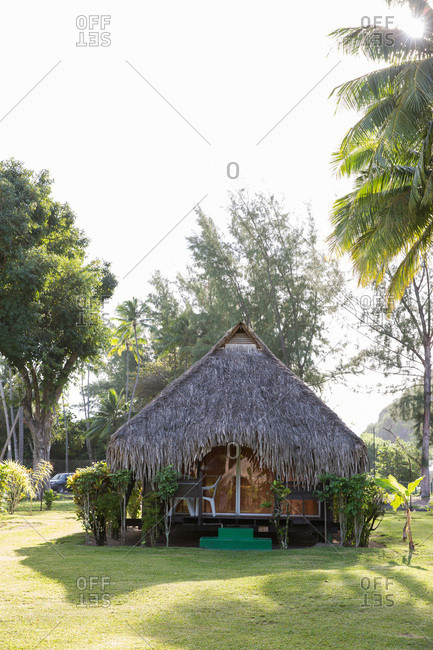 Thatched roof bungalow in Mo'orea