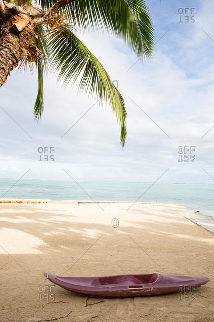 Palm tree and empty kayak on sandy beach in Tahiti