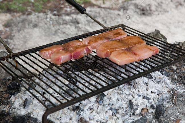 Tuna grilling over hot coals