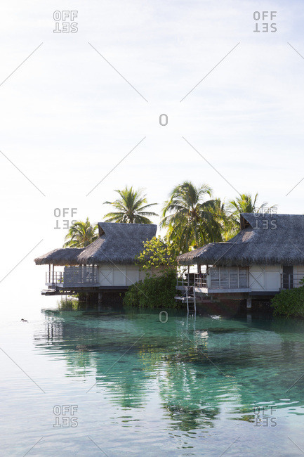 Overwater bungalows and palm trees on tropical island