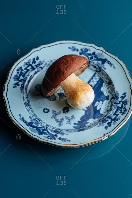 Single mushroom on a plate