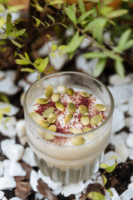 White frothy beverage with pumpkin seeds and spice