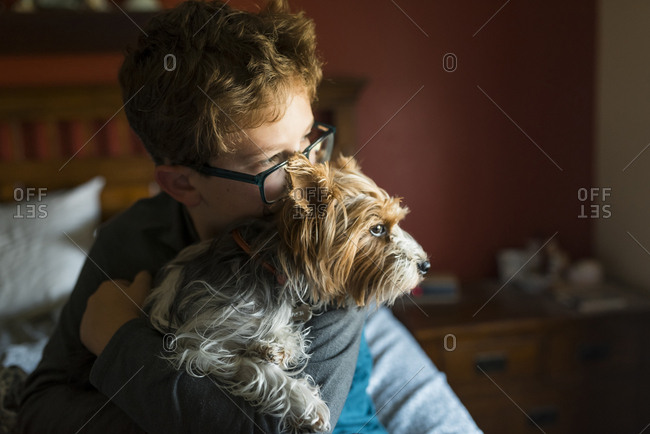 Boy with dog looking away while sitting on bed at home